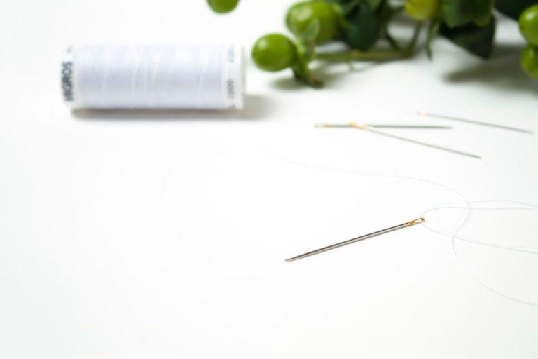 Garn, Nadel und Grünpflanze